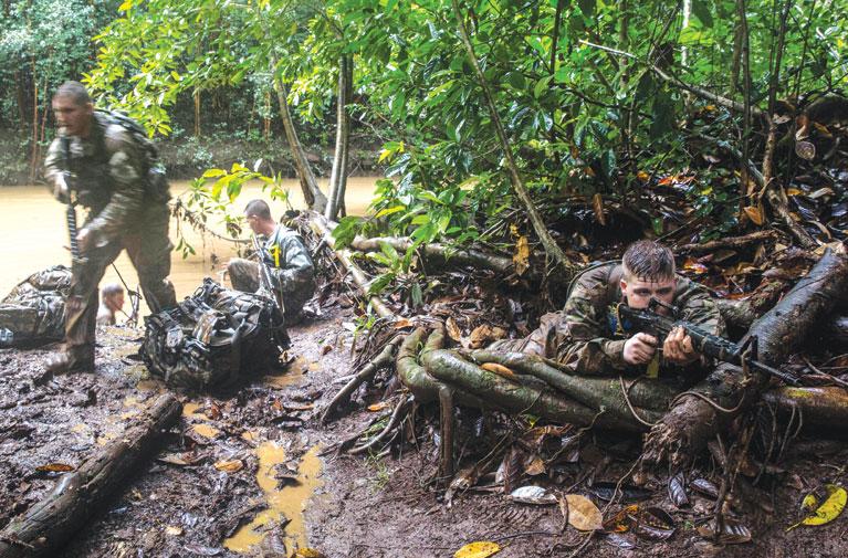 Soldiers train for jungle warfare at Hawaii rainforest