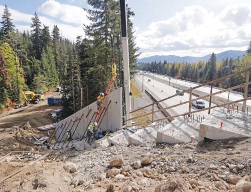 Washington state builds bridge to keep wildlife off the highway