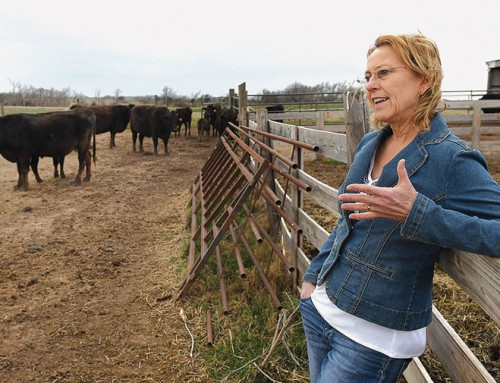 Family ranch uses higher-end breed to produce healthier meat