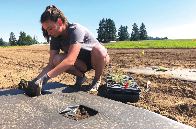 New Oregon research lab, seed certification bring standards