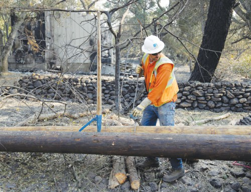 California crisis of fires, blackouts decades in the making